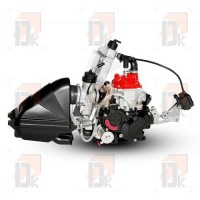 Moteur ROTAX EVO - ROTAX - 125 J MAX EVO - Junior | Direct-karting.com