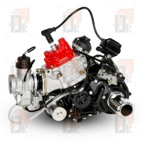 Moteur ROTAX EVO - ROTAX - 125 MAX DD2 EVO - Senior | Direct-karting.com