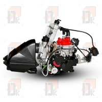 Moteur ROTAX EVO - ROTAX - 125 MAX EVO - Senior | Direct-karting.com